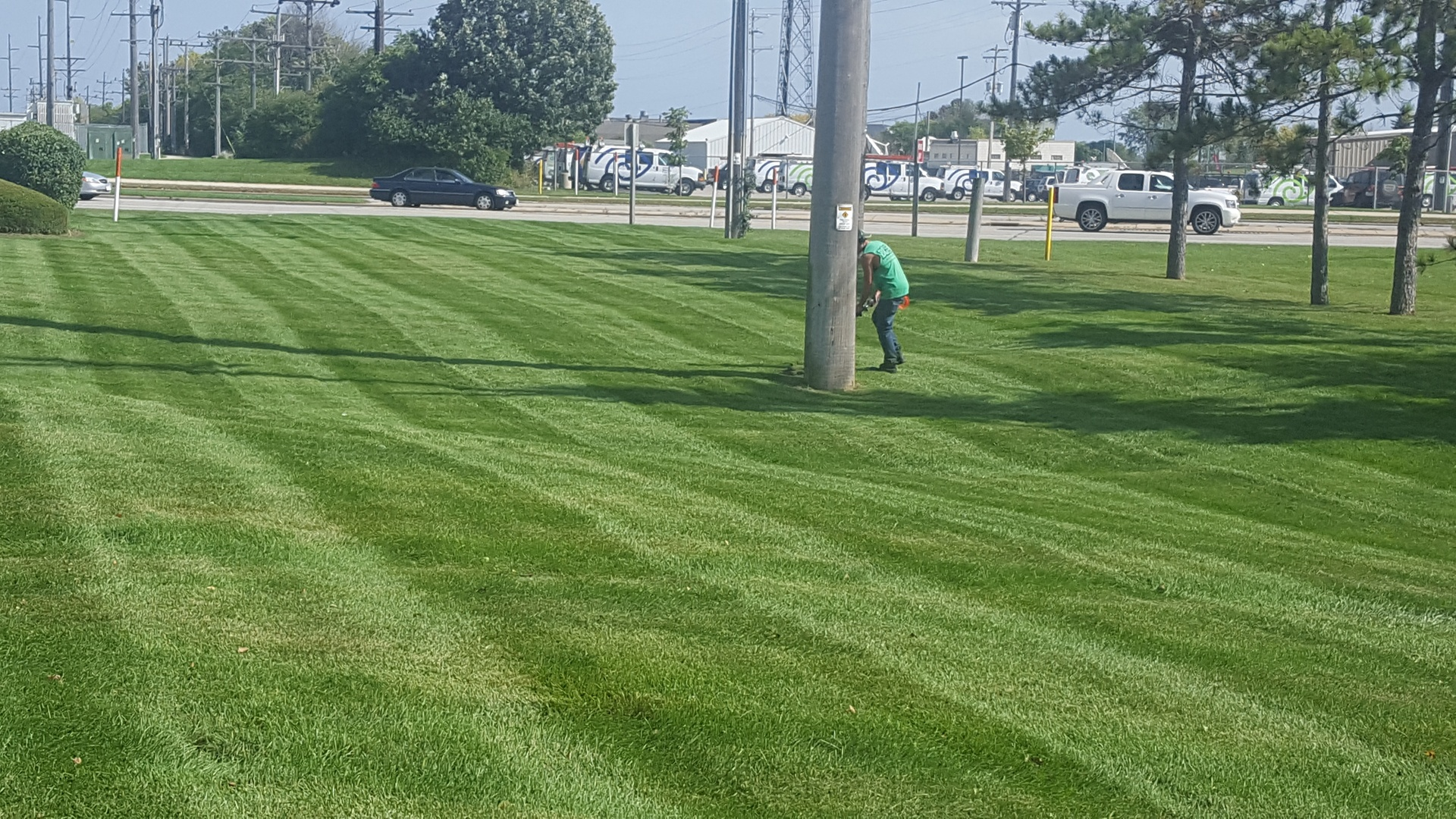 Beautiful Commercial Lawn Care Services